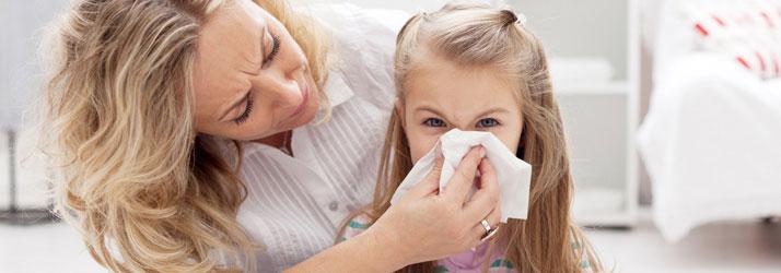 Chiropractic Flossmoor IL Allergies Sensitivities